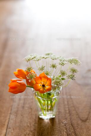 小瓶の花06の素材 [FYI00106454]
