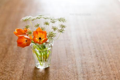 小瓶の花05の素材 [FYI00106455]