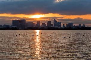 夕方の海とビル03の写真素材 [FYI00106479]