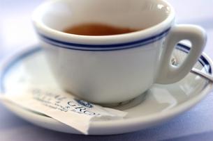 コーヒーカップの写真素材 [FYI00106593]