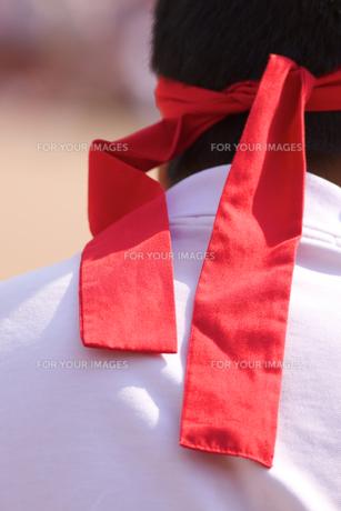運動会の赤ハチマキの写真素材 [FYI00106664]