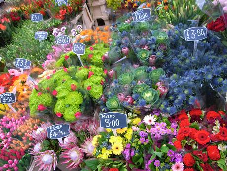 ロンドンのフラワーマーケットの写真素材 [FYI00106716]