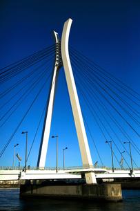 隅田川にかかる中央大橋の写真素材 [FYI00106798]