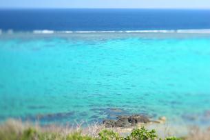 沖縄の海の写真素材 [FYI00106821]
