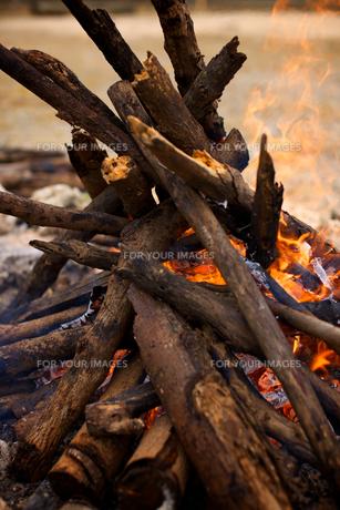 たき火の写真素材 [FYI00106861]