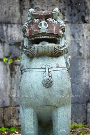 首里城 歓会門のシーサーの写真素材 [FYI00106912]