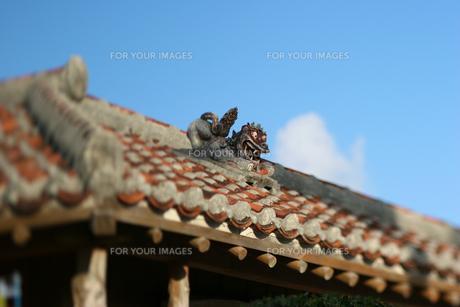 屋根の上のシーサーの素材 [FYI00107036]