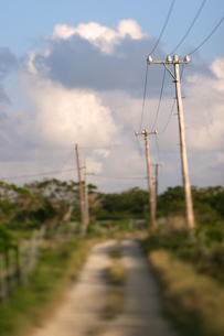竹富島の田舎道の写真素材 [FYI00107037]