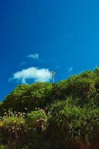 久高島の写真素材 [FYI00107047]