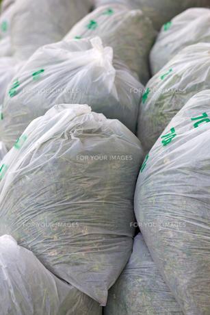 ゴミ袋の素材 [FYI00107258]