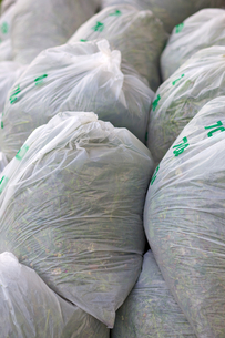 ゴミ袋の写真素材 [FYI00107258]
