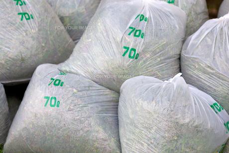 ゴミ袋の写真素材 [FYI00107274]