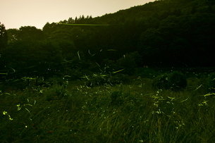 長野県の写真素材 [FYI00107735]