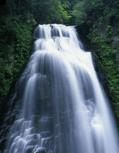 夏の番所大滝の写真素材 [FYI00107790]