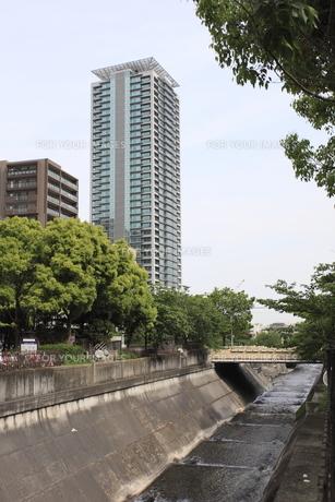 高層マンションと緑地の写真素材 [FYI00107870]