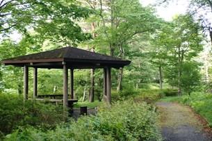 森林の中の東屋の写真素材 [FYI00108107]