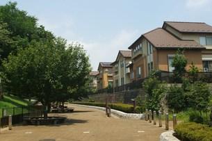 夏の住宅街の写真素材 [FYI00108146]