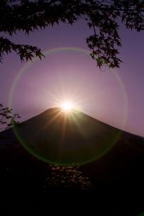 山中湖から見るダイヤモンド富士の写真素材 [FYI00108741]