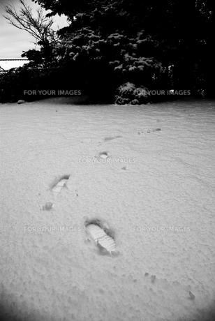 足跡の写真素材 [FYI00108780]