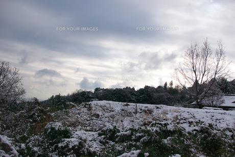 冬の空の素材 [FYI00108804]