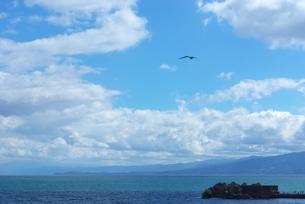 海と雲とカモメの素材 [FYI00108857]