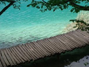 クロアチアのプリトヴィツェ国立公園の写真素材 [FYI00108935]