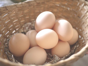 生卵の写真素材 [FYI00108982]