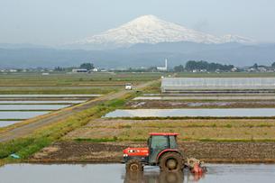 残雪の鳥海山を背景に代かきの写真素材 [FYI00109487]