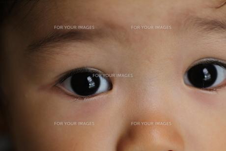 目の写真素材 [FYI00109543]