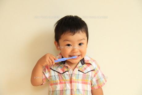 笑顔で歯磨きの写真素材 [FYI00109767]