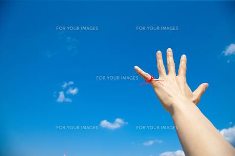若い女性の左手小指から赤い糸が青い空にの写真素材 [FYI00110014]