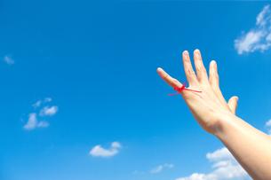 若い女性の左手小指から赤い糸が青い空にの写真素材 [FYI00110020]