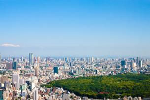 新宿から東京湾へ望む風景の写真素材 [FYI00110028]