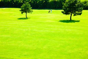 ゴルフ場のフェアフェーを歩く男性ゴルファーの素材 [FYI00110043]