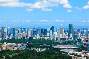 新宿から六本木ミッドタウンと東京タワーへの眺望の写真素材 [FYI00110084]