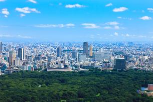 明治神宮と代々木体育館と渋谷への眺望の写真素材 [FYI00110096]