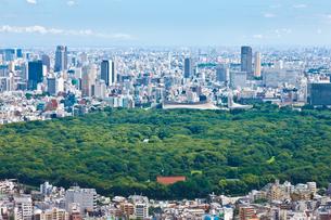 明治神宮と代々木体育館と渋谷への眺望の写真素材 [FYI00110109]