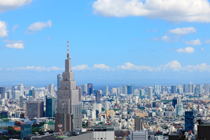 ドコモタワーと品川への眺望の写真素材 [FYI00110113]