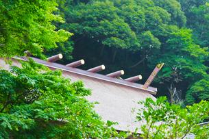 神社の屋根の写真素材 [FYI00110114]
