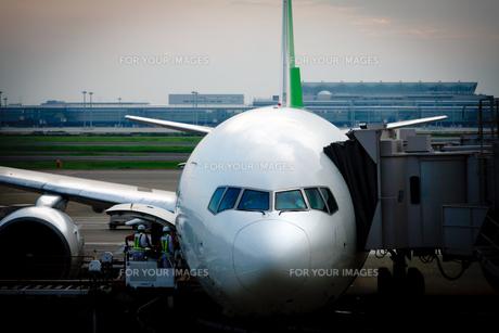 航空機の写真素材 [FYI00110144]