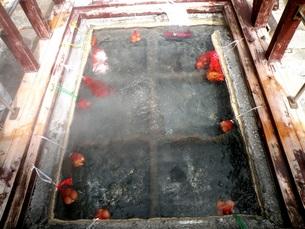 熊野古道の風景その4 熊野古道旧道 湯の峰温泉湯つぼでゆで卵をまつの写真素材 [FYI00110370]