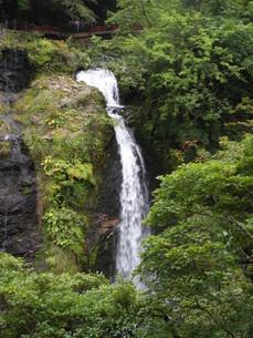 山形銀山温泉の町並みその1 銀山温泉白糸の滝の写真素材 [FYI00110376]