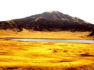 九州の旅 熊本編 早朝の草千里から見た阿蘇山の写真素材 [FYI00110377]