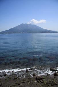 浜から見上げる桜島の写真素材 [FYI00110629]