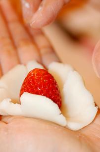 若い女性が手作り中のイチゴ大福の写真素材 [FYI00110684]