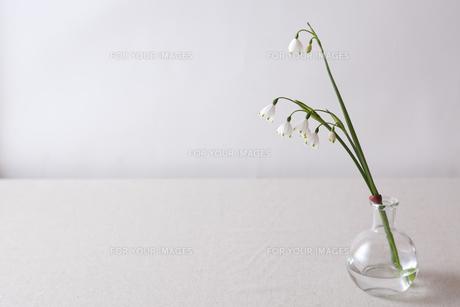 窓辺の花瓶の素材 [FYI00110946]
