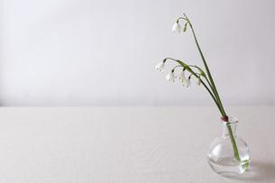 窓辺の花瓶の写真素材 [FYI00110946]