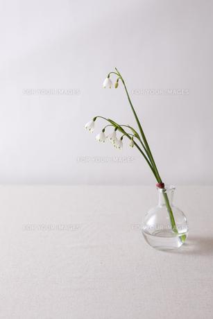 窓辺の花瓶の素材 [FYI00110949]