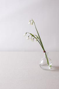 窓辺の花瓶の写真素材 [FYI00110949]