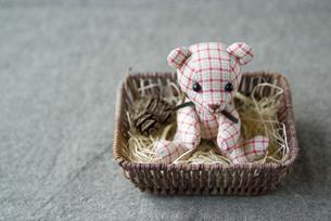 手づくりの熊の人形の素材 [FYI00111030]